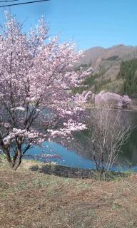 中綱湖です